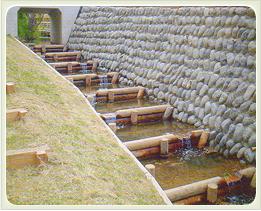 (写真)河川・水制工