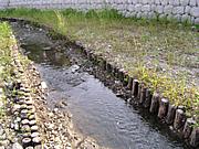 「杉・桧(ひのき・ヒノキ・檜)杭」の使用事例