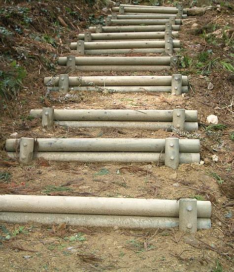 (写真)兵庫県多可町 森林公園内