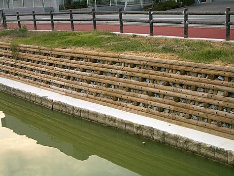 (写真)兵庫県稲美町 琴池
