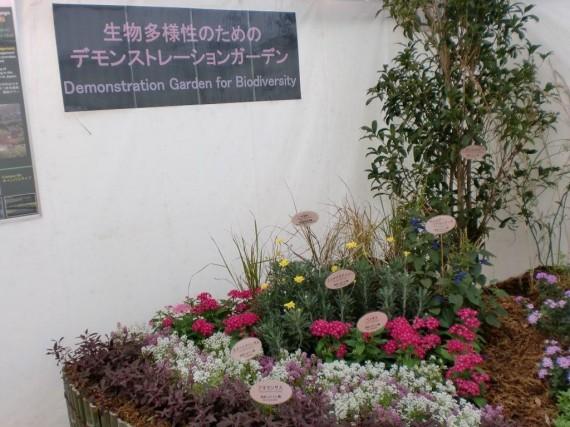 「生物多様性交流フェア」 淡路景観園芸学校のブース