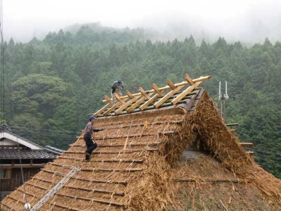 茅葺き屋根に「棟木」があがりました