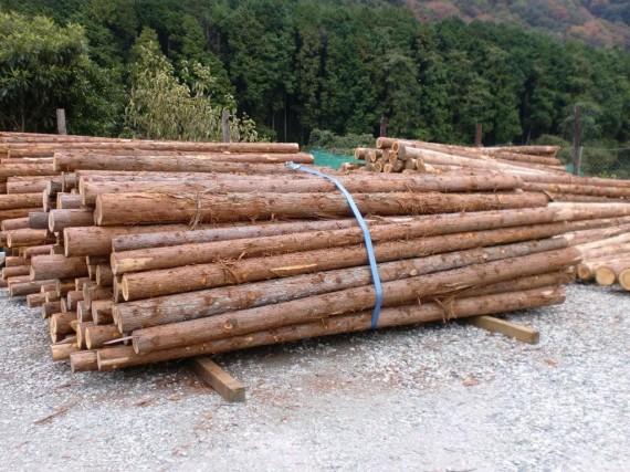 兵庫県の間伐材なら……「間伐材・原木」入荷中