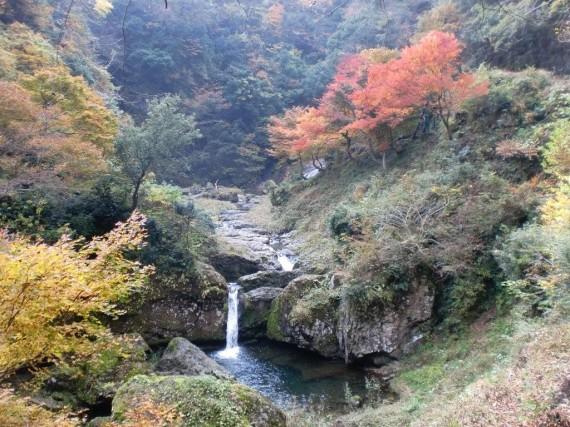 阿瀬渓谷・いもじが滝(阿瀬五瀑)の紅葉風景