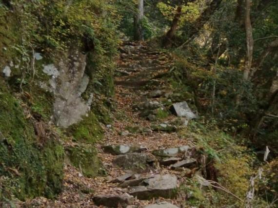 阿瀬渓谷 金山廃村への登山道で最も急峻なところの自然石の石段