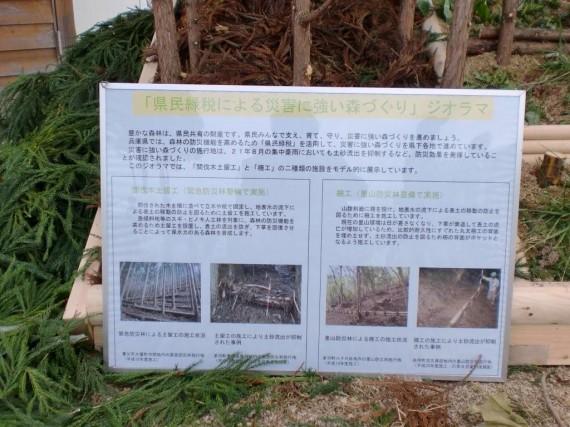 「県民緑税による災害に強い森づくり」 ジオラマの解説書