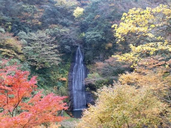 阿瀬渓谷・源太夫滝(阿瀬五瀑) 紅葉風景