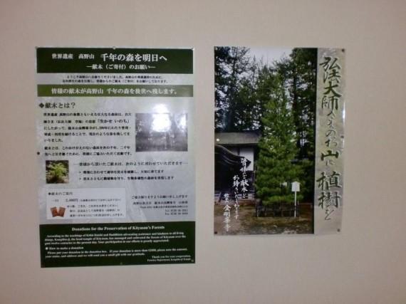 高野山・高野槇「献木」の広報ポスター