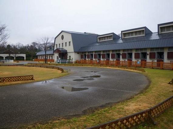 三木ホースランドパーク 場舎遠景 (前面に木製柵)