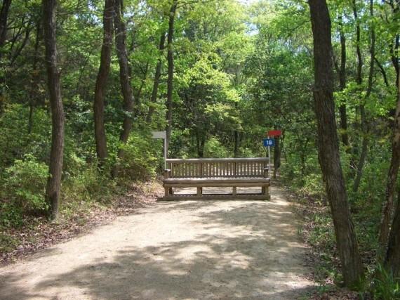 「クロスカントリー競技」 林間コース内に設置された「木製障害物」
