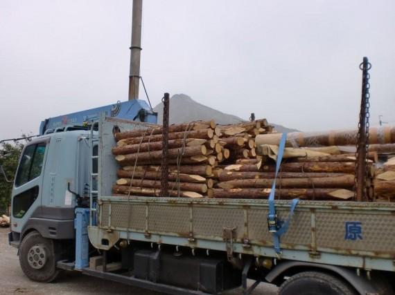 4トントラックに載せられた「杭」(木なり)