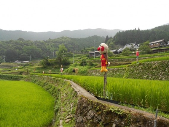 岩座神・棚田オーナー制度で、オーナーが製作した案山子の全体写真 (他のブロックにもあります)