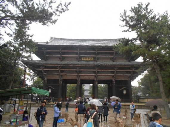 『丸柱・円柱巡礼』第1号      『東大寺・南大門』