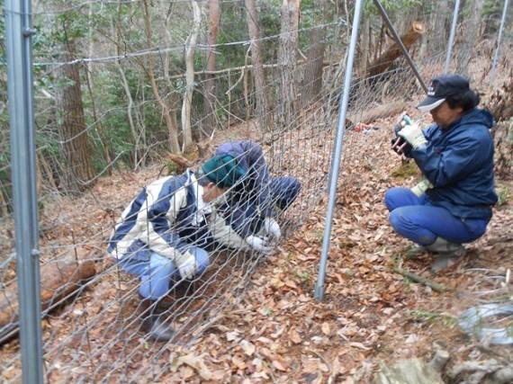 「鹿柵」の大きな損傷した箇所は、「メッシュシート」で補強