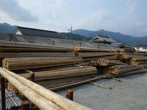 「レアな木材」となった『足場丸太」 (弊社では在庫の確保に努めています)