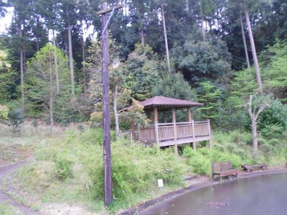 約10年ぶりに見た「木製電柱」 (秋野不矩美術館への接続道路)