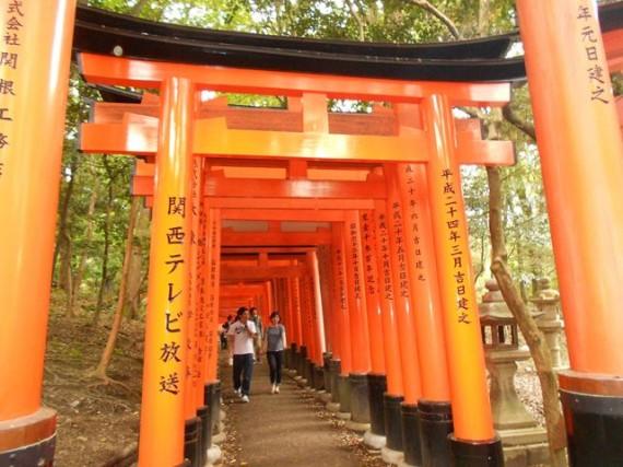 稲荷山参道にある「奉納鳥居」(大型) (鳥居には「奉納者の名前が彫られています)
