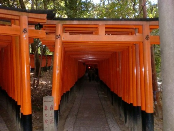 「鳥居のトンネル?」 「千本鳥居」の入口