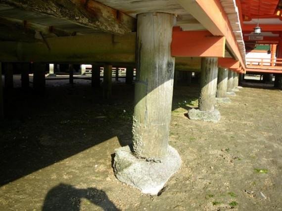 「厳島神社・廻廊」の丸柱の基礎部分(拡大) (礎石に接した部分は埋め木・接ぎ木が…)