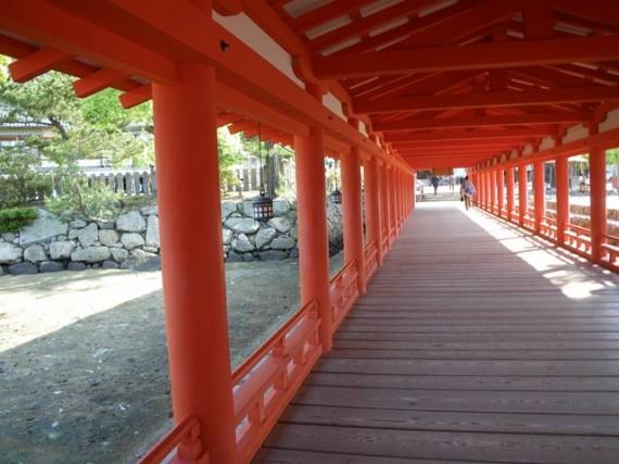 「厳島神社・廻廊」 回廊を上側から (朱塗りの丸柱・円柱の列に感動)