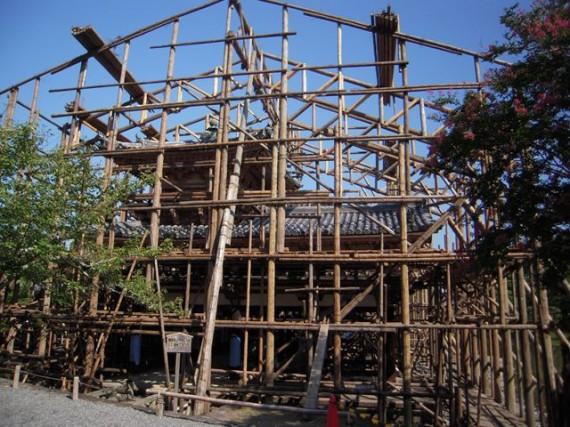 修理用・木製足場材で覆われつつある「平等院鳳凰堂」 (南面から) (H24.09.22)