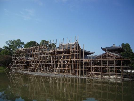 修理用・木製足場が屋根の部分まで組み上がった「国宝・平等院鳳凰堂」(H24.09.22見学時)