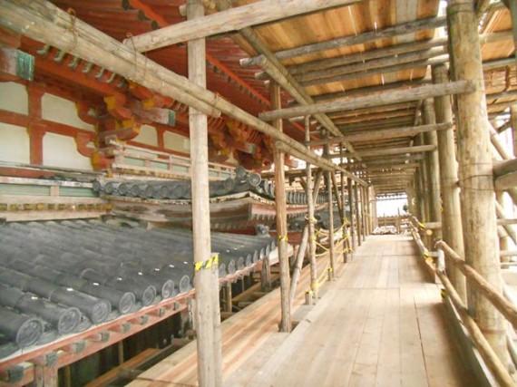 「平等院鳳凰堂」と「足場丸太の木組み」の調和