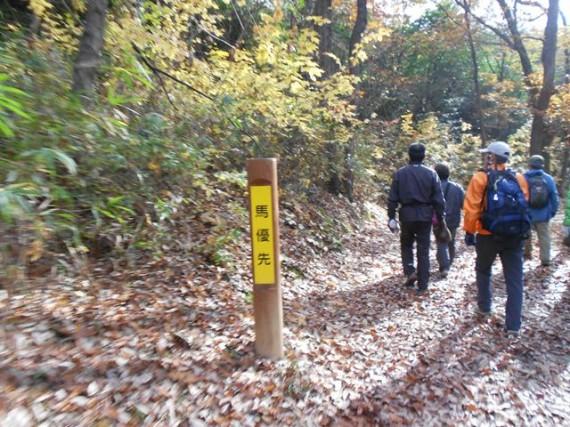 紅葉の三木ホースランドパーク 「馬優先」の標識(道標)が各所に (弊社納材品です)