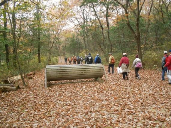 紅葉の三木ホースランドパーク クロスカントリーコースの「飛越障害」の脇をウオーク
