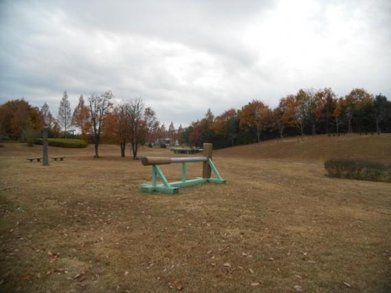 三木ホースランドパークの紅葉 芝生広場の「飛越障害」