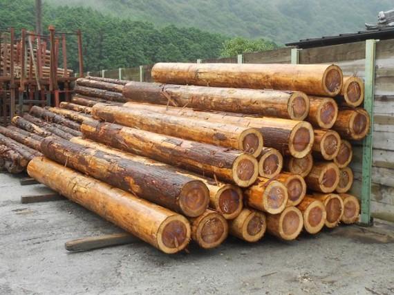 「直径30cmの間伐材?」を生かす方法 (大径木・丸棒加工機も併設)