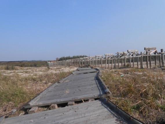 木橋の下流に流された「橋板・橋桁」のユニット (H25.11下旬)