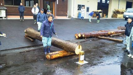 初市で「大径木・円柱材」の加工用原木を確保