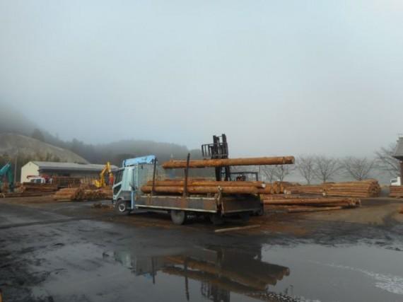 「6m長尺材」の原木市場からの引き取り