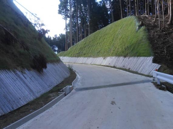 林道の建設現場で土留め材として縦置きされている丸棒材